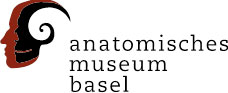 Anatomical Museum of the University of Basel